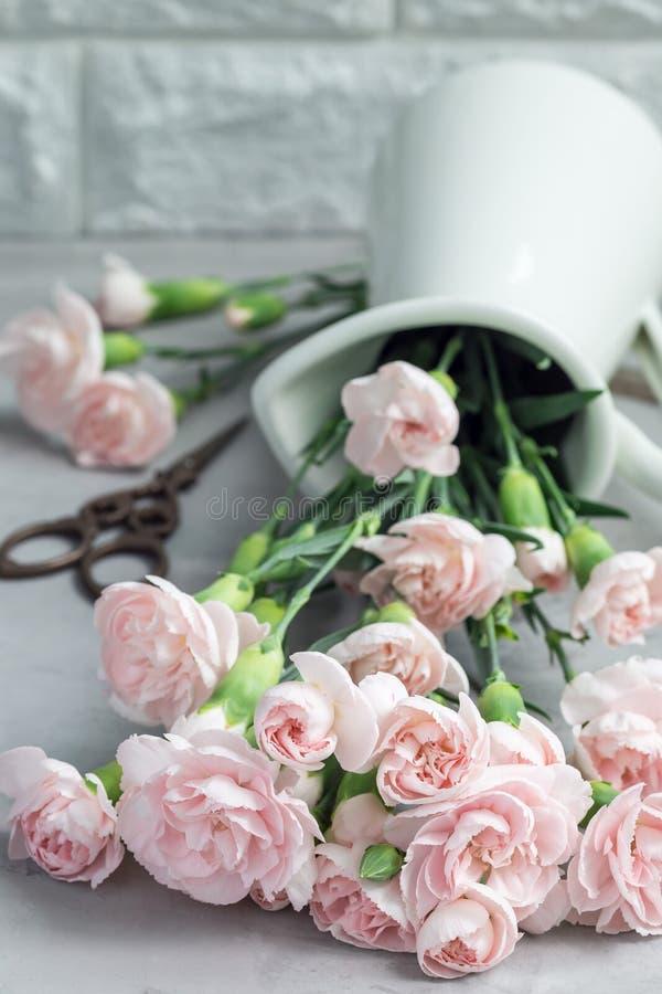Små mjuka rosa nejlikablommor i emaljvas på grå färgbetong, mother& x27; bakgrund för kort för s-daghälsning, lodlinje arkivbilder