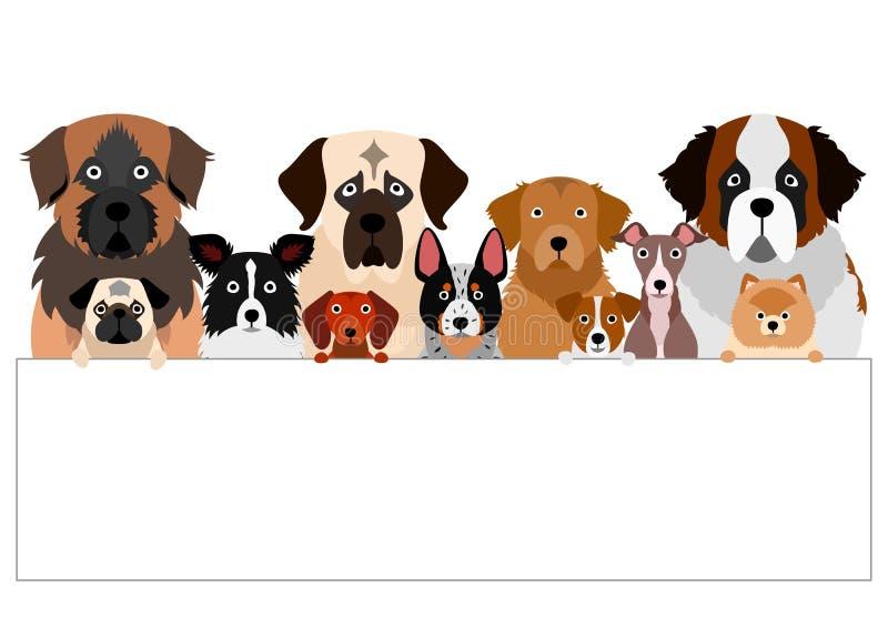 Små och stora hundar med vit kartong vektor illustrationer