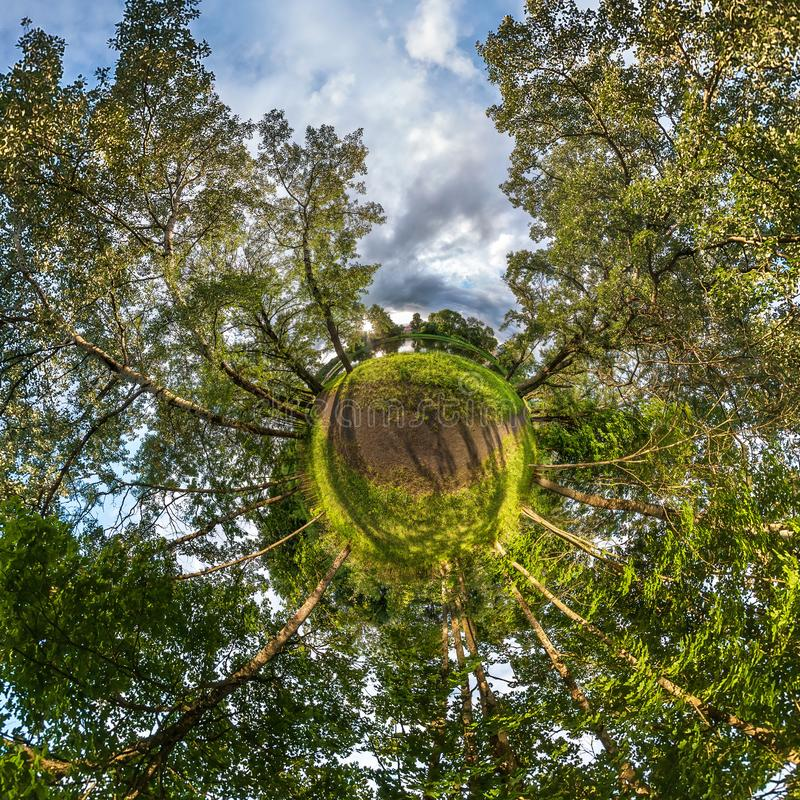 Små planetsomvandlingar av sfäriska panorama 360 grader Sfäriskt abstrakt flygvy i nybeskog Rymdböjning royaltyfri bild