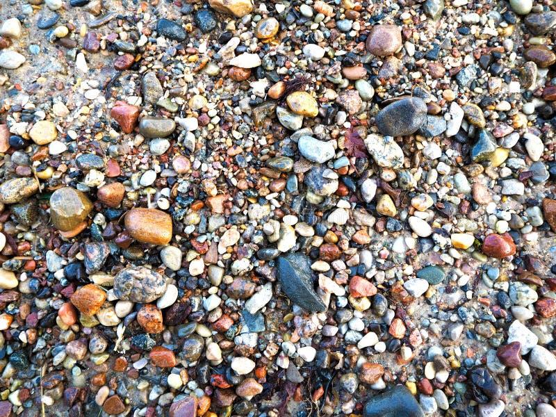 Små stenar på stranden av det baltiska havet royaltyfria foton