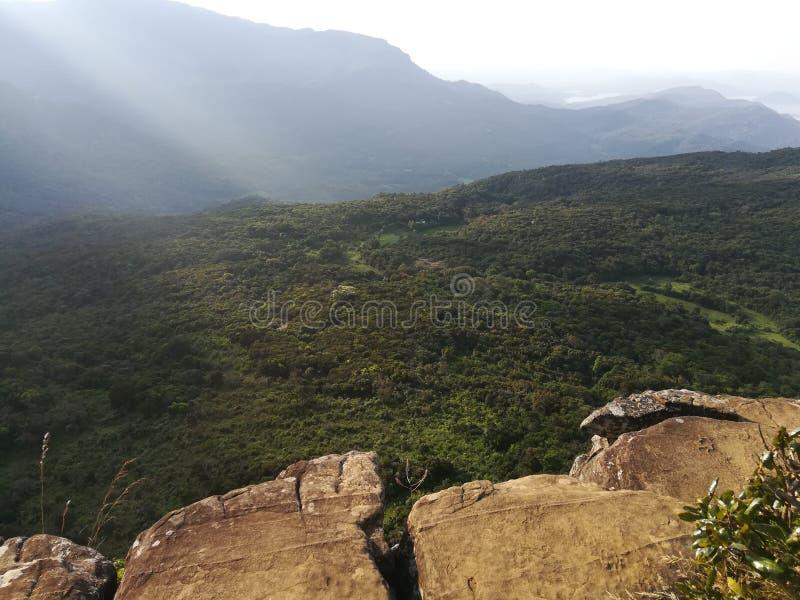 Små världar avslutar i härlig natur i Sri Lanka royaltyfria foton