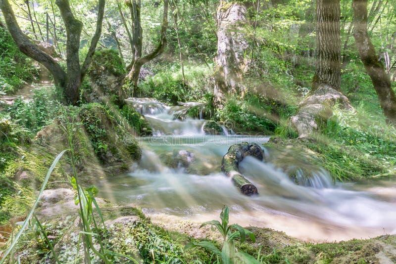 Små vattenfall som sträcker till och med trät arkivfoto