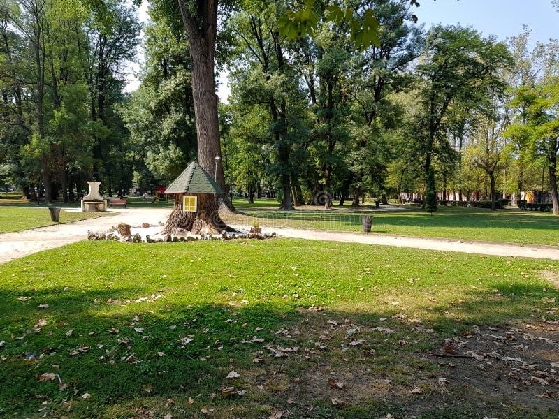 Småbarns lekstuga på gräsmattan i staden parkerar i tidig vår royaltyfri fotografi