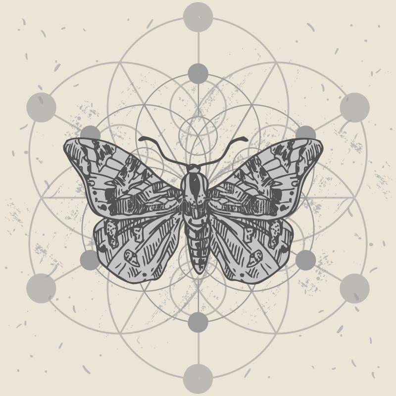 Smögel och helig geometri Bild på handritad vektor royaltyfri illustrationer