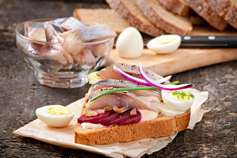 Smörgås av rågbröd med sillen royaltyfri fotografi