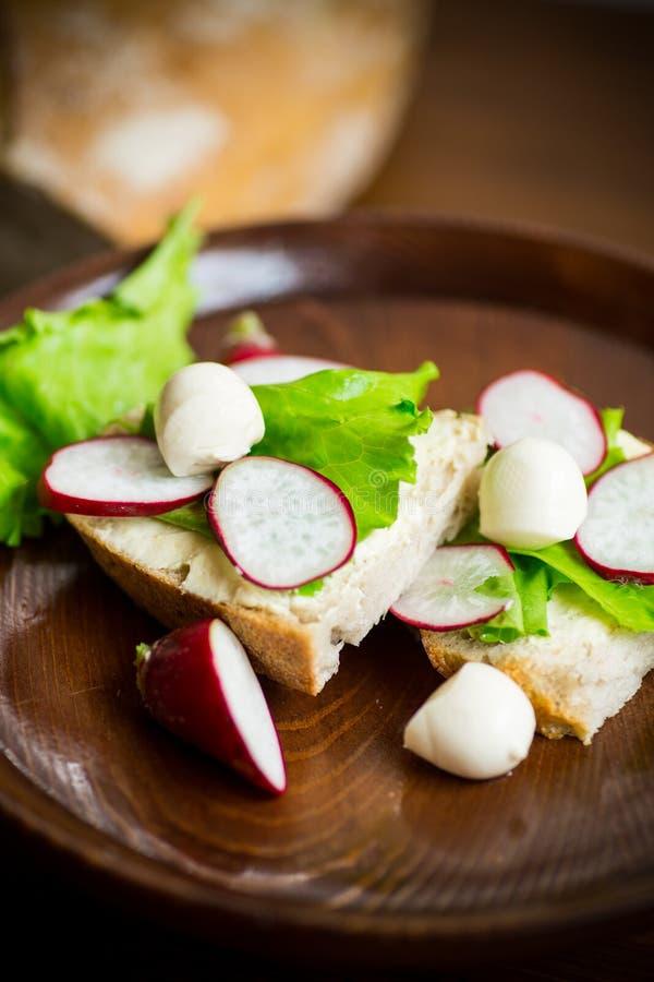 Smörgås med ost, grönsallat och den röda rädisan på ett trä arkivbild