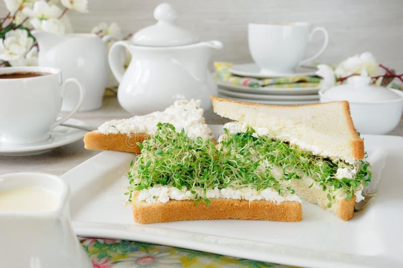 Smörgås med ricotta- och alfalfagroddar royaltyfri fotografi