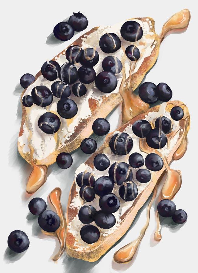 Smörgåsar med kräm- getost, blåbär och honung royaltyfria bilder