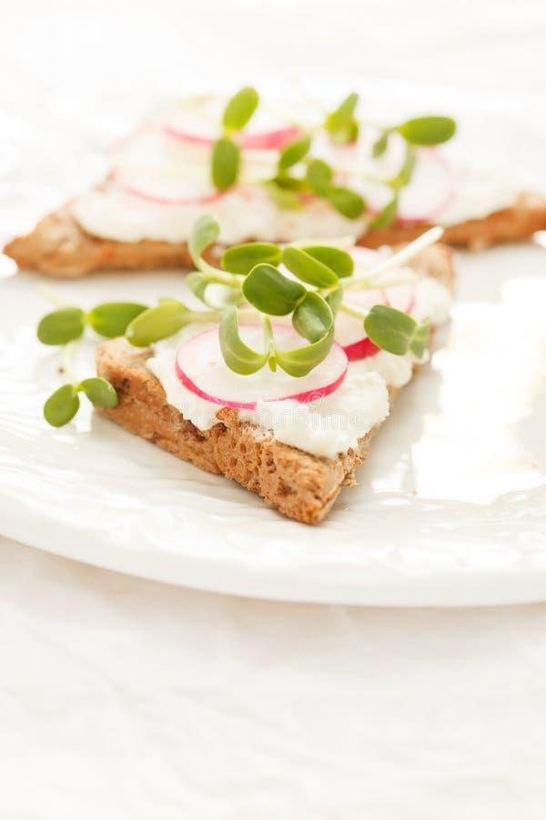 Smörgåsar med rädisan fotografering för bildbyråer