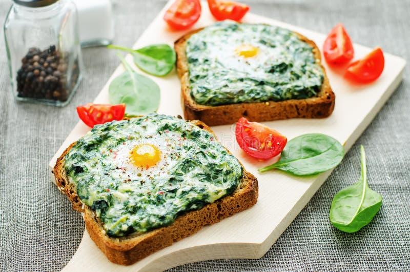 Smörgåsen bakade med spenat, gräddost och ägget royaltyfri fotografi
