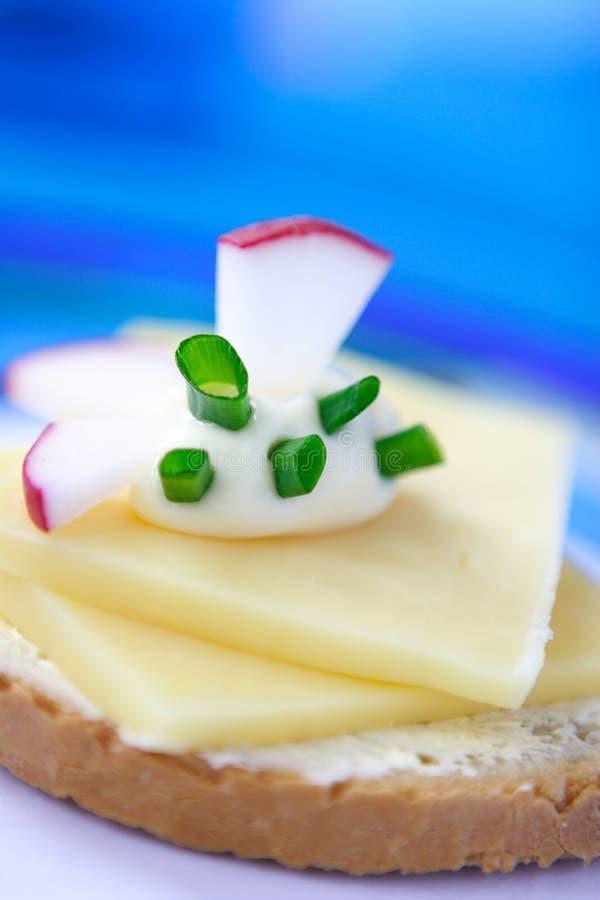 Download Smörgåsvegetarian arkivfoto. Bild av lunch, protein, gräslökar - 514654