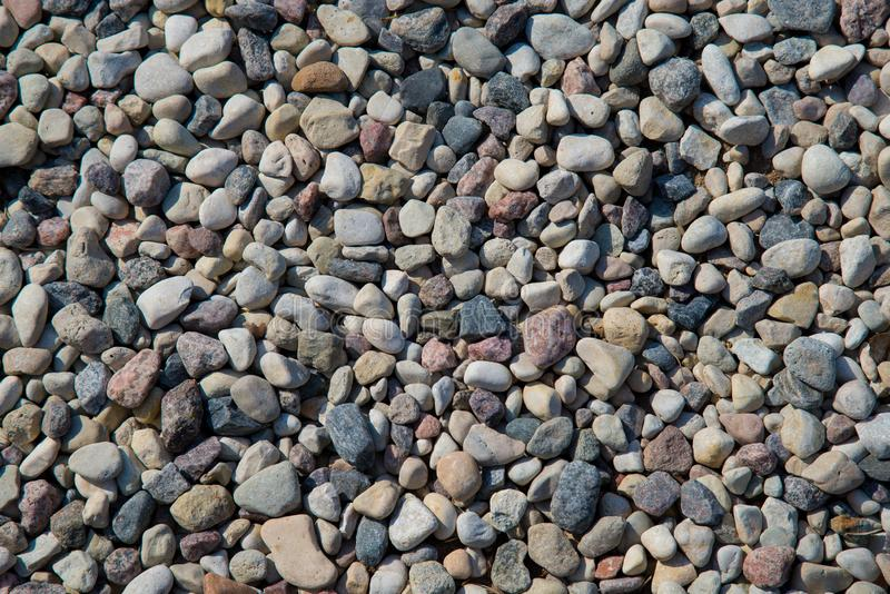 Sm? havsstenar, grusbakgrund Naturbakgrund fr?n gr?a havskiselstenar royaltyfria foton