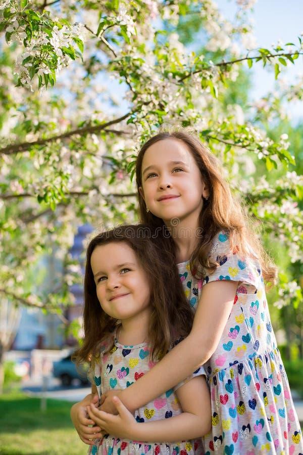 Sm? lyckliga flickor p? g?r p? en sommarafton p? solnedg?ngen i parkerar systrar arkivfoton
