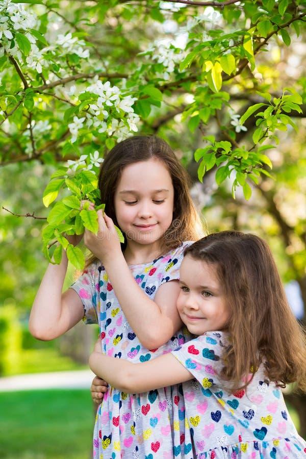 Sm? lyckliga flickor p? g?r p? en sommarafton p? solnedg?ngen i parkerar systrar arkivfoto