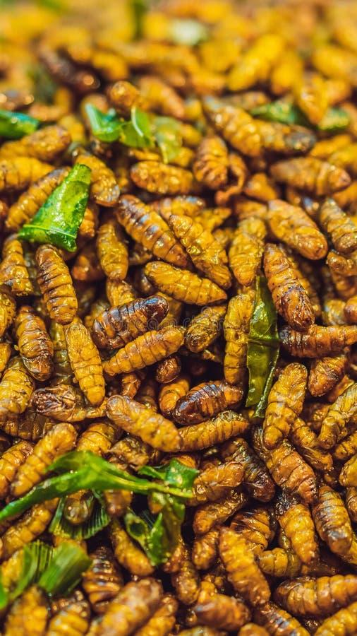 Smażący insekty, pluskwy smażyli na Ulicznym jedzeniu w Thailand PIONOWO formacie dla Instagram mobilnej opowieści lub opowieść r zdjęcie royalty free