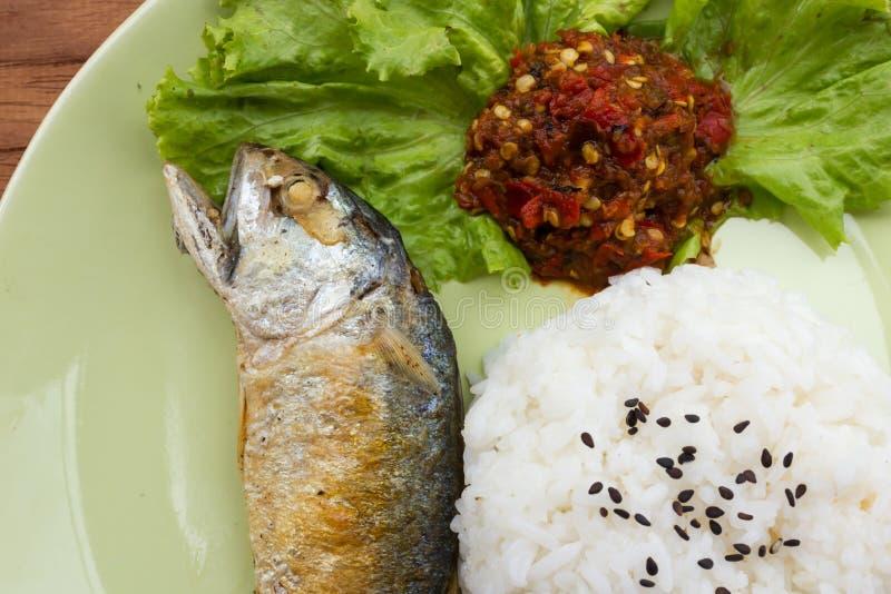 Smażąca Bodied makrela z ryż na zieleń talerzu zdjęcie royalty free