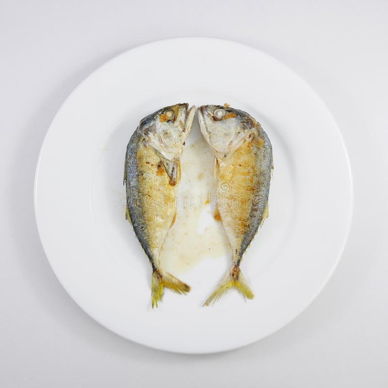 Smażąca krótka makreli ryba (2) zdjęcia stock