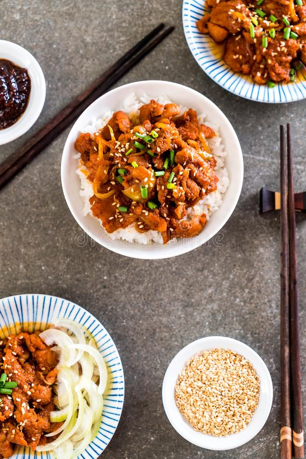 smażąca wieprzowina z korzennym koreańskim kumberlandem na odgórnych ryż (bulgogi) fotografia stock