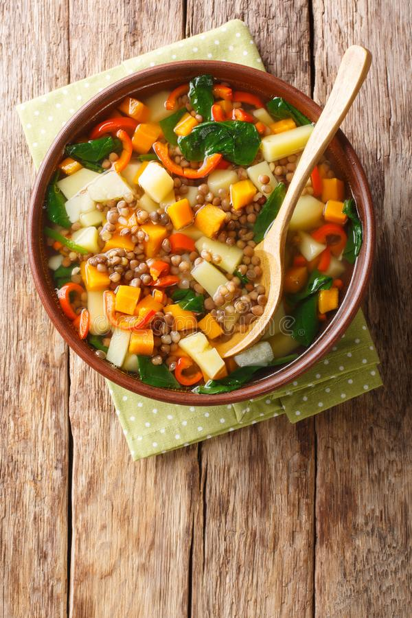 Smaczna zupa z warzywami, soczewicą i szpinakiem w miseczce Pionowy widok u góry zdjęcia royalty free