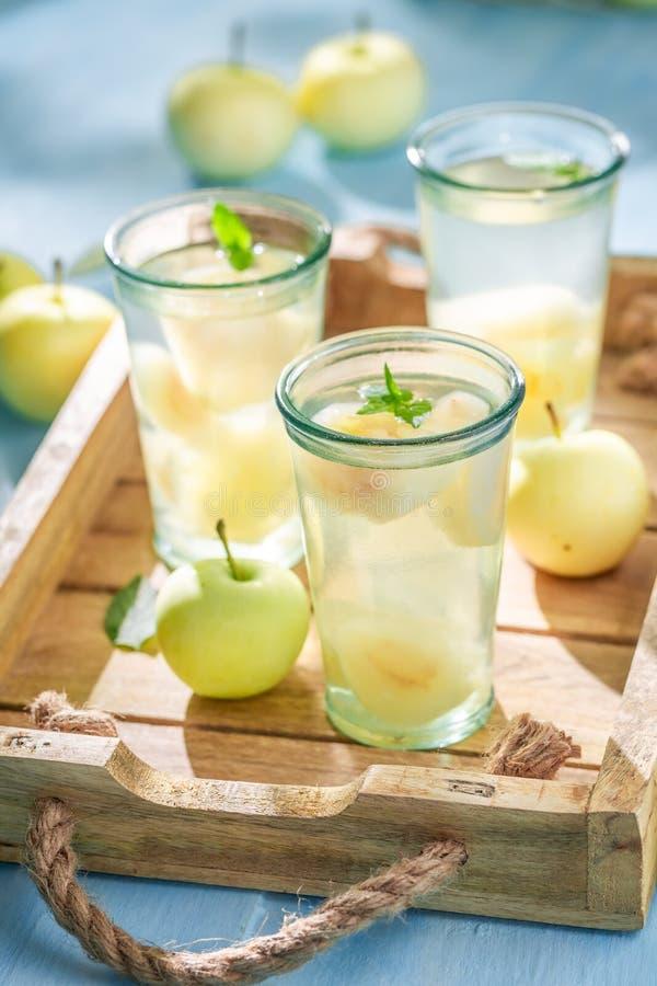 Smakelijk appelsap met appelen en munt stock foto