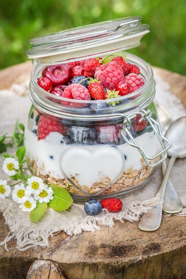 Smakelijke die granola en yoghurt met bloemen wordt verfraaid royalty-vrije stock foto