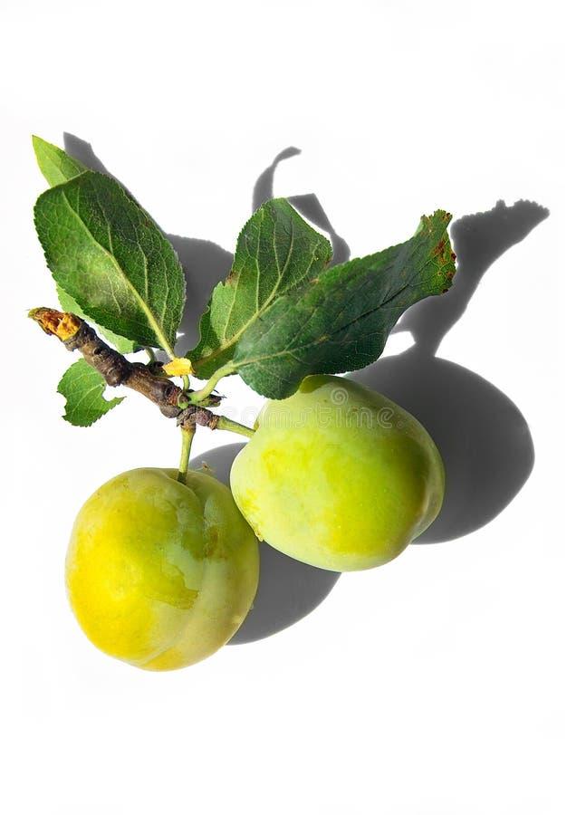 Smakelijke gele pruimen stock afbeelding
