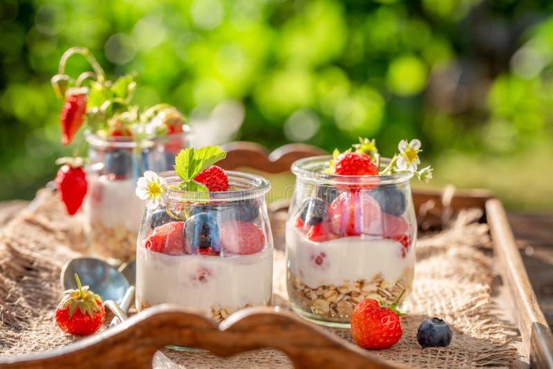 Smakelijke granola met bessen en yoghurt in tuin royalty-vrije stock foto's