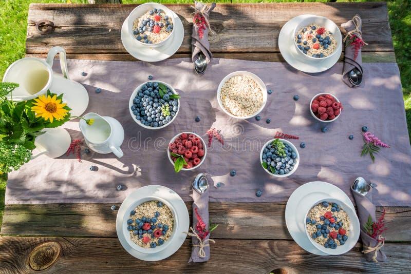 Smakelijke granola met frambozen en bosbessen in de zomer royalty-vrije stock foto's