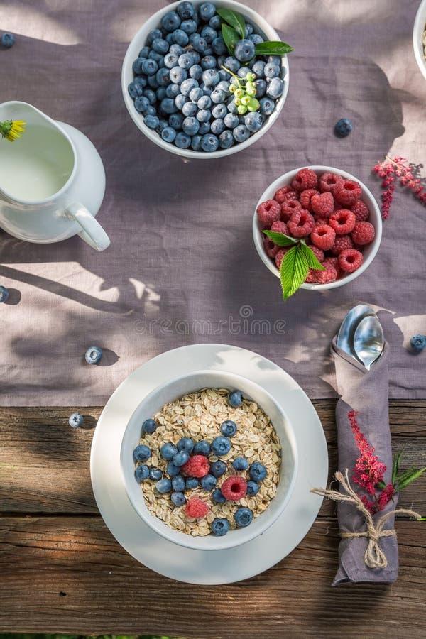 Smakelijke granola met frambozen en bosbessen in tuin stock afbeelding