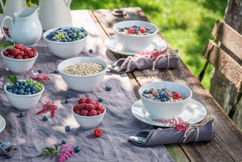 Smakelijke granola met frambozen en bosbessen in zonnige dag royalty-vrije stock fotografie