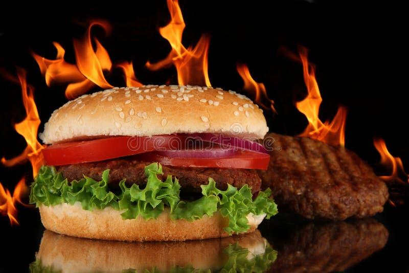 Smakelijke hamburger stock foto's