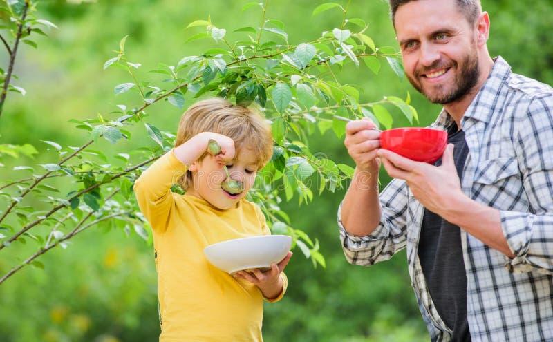 Smakelijke havermoutpap Organische voeding Gezond voedingsconcept Voedingsgewoonten De familie geniet van eigengemaakte maaltijd  royalty-vrije stock fotografie