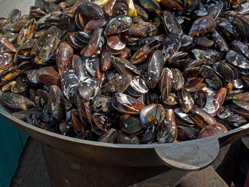 Smakelijke heerlijke gebraden gekookt die zeevruchtenmosselen in een ketel in openlucht worden gebraden royalty-vrije stock foto