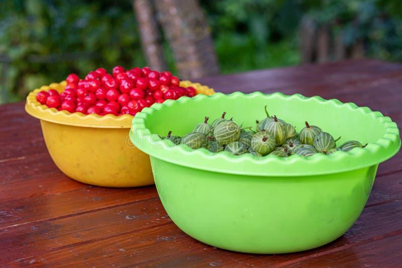 Smakelijke kruisbesbessen en kersen in kommen op een houten lijst in de tuin De zomeroogst van bessen stock afbeeldingen