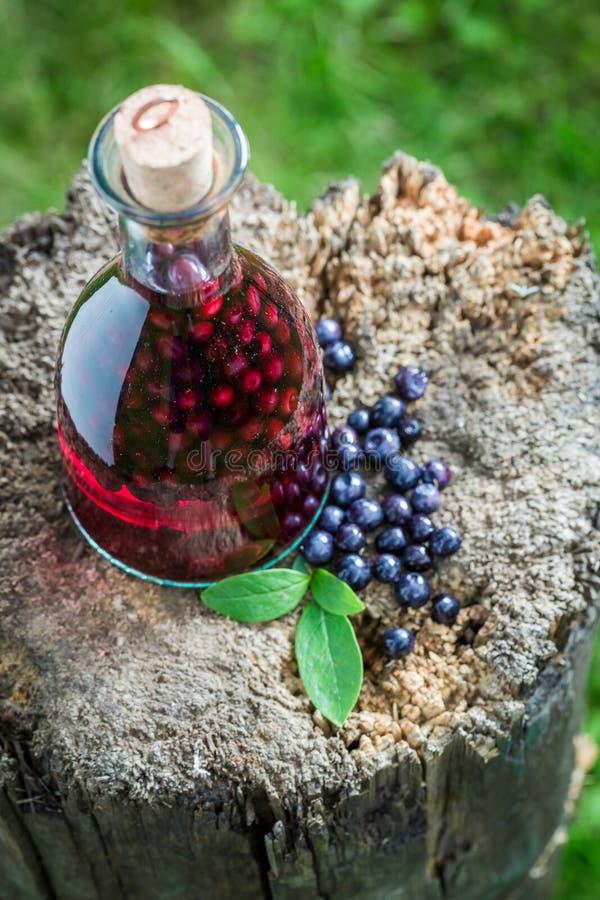 Smakelijke likeur in een fles met alcohol en bosbessen stock fotografie