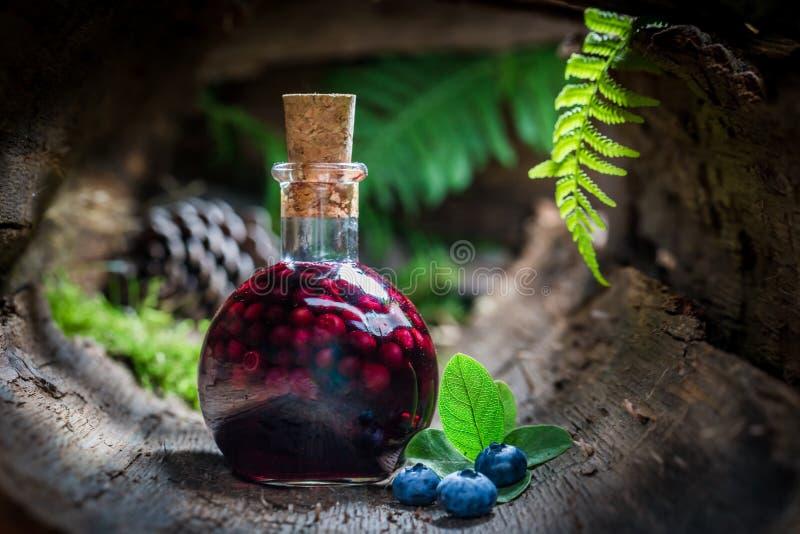 Smakelijke likeur in een fles met bosbessen en alcohol royalty-vrije stock afbeeldingen