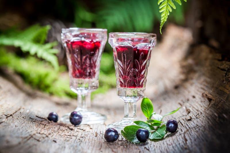 Smakelijke likeur met alcohol en bosbessen royalty-vrije stock fotografie