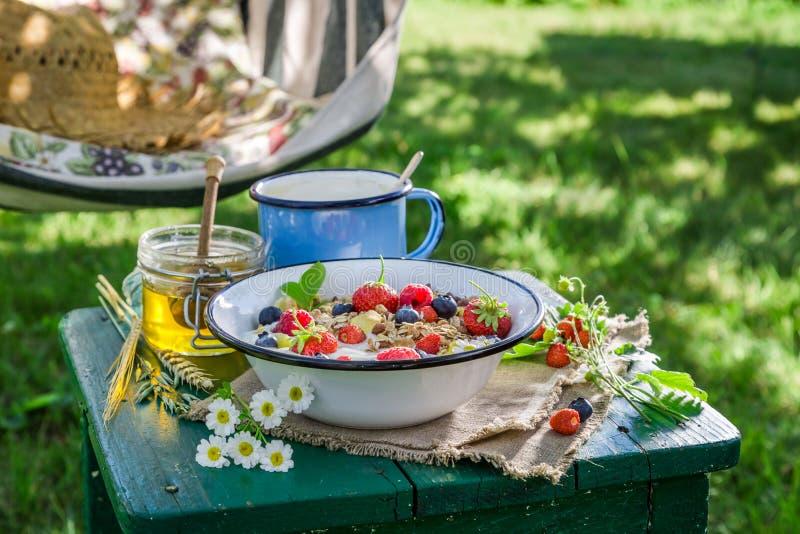 Smakelijke muesli met bessen en yoghurt stock afbeeldingen