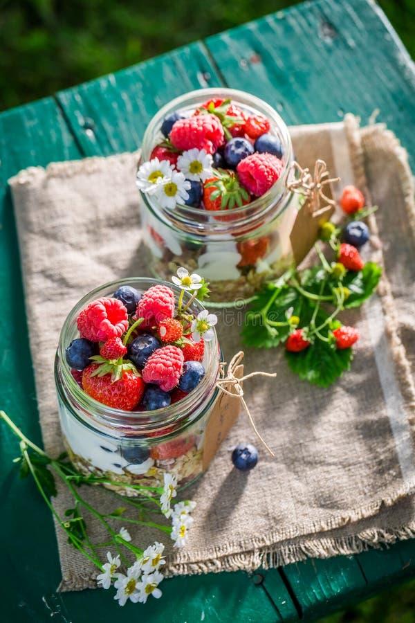 Smakelijke muesli met bessen en yoghurt in tuin stock afbeeldingen