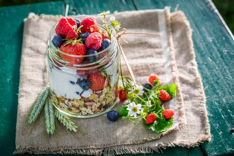Smakelijke muesli met bessen en yoghurt in zonnige dag royalty-vrije stock foto