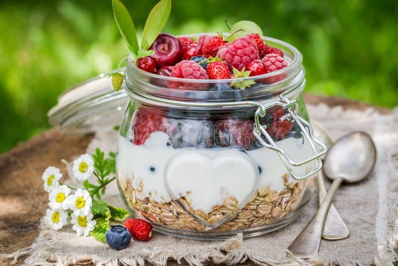 Smakelijke muesli met yoghurt en bessen royalty-vrije stock fotografie