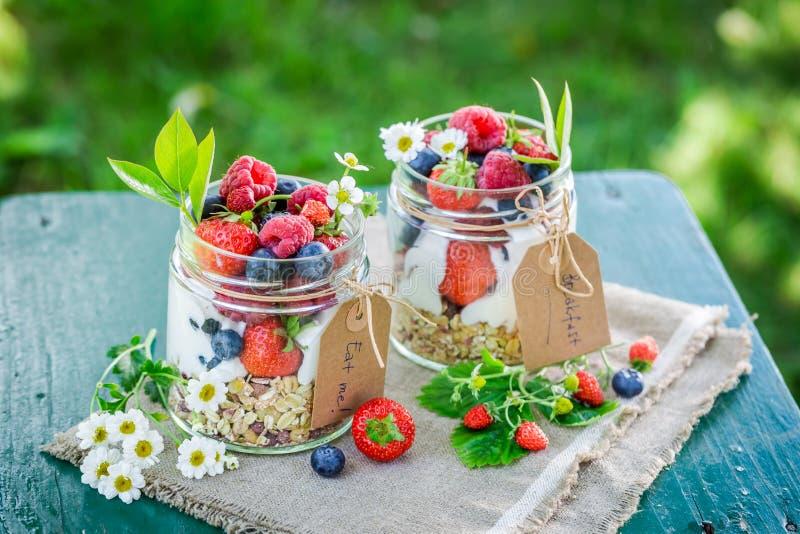 Smakelijke muesli met yoghurt en bessen in tuin stock fotografie