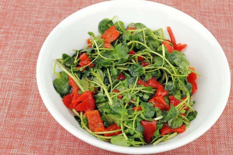 Download Smakelijke Witte Waterkerssalade Stock Afbeelding - Afbeelding bestaande uit heerlijk, blad: 39115993