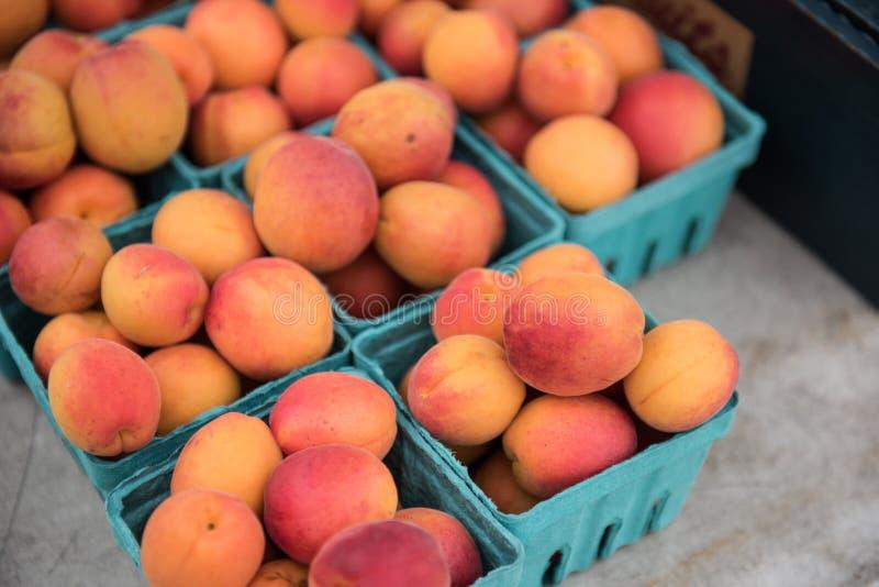 Smakliga aprikors royaltyfri foto