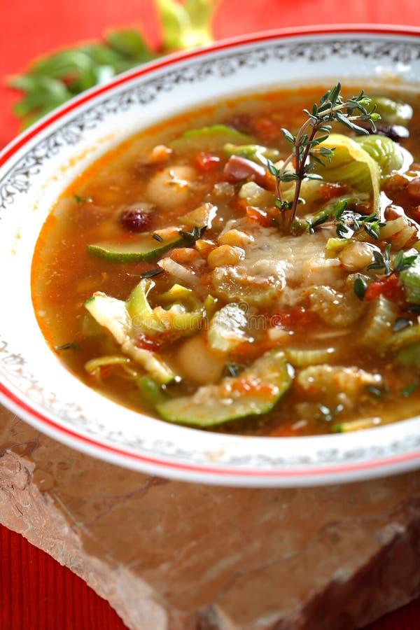 smakliga grönsaker för soup arkivfoto