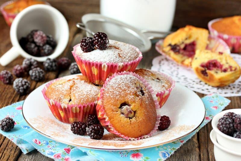 Smakliga muffin med nya bär fotografering för bildbyråer
