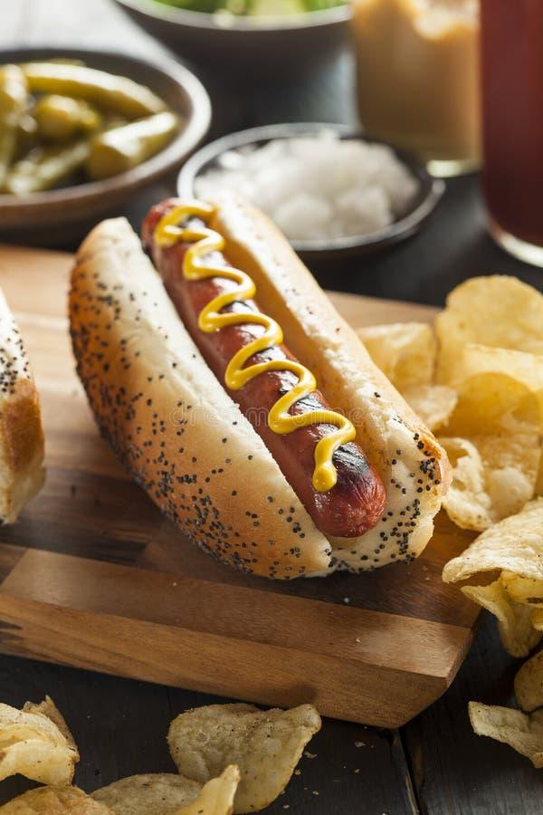 Smakosz Piec na grillu Wszystkie wołowiny Hots psy fotografia stock