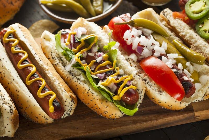Smakosz Piec na grillu Wszystkie wołowiny Hots psy zdjęcie stock