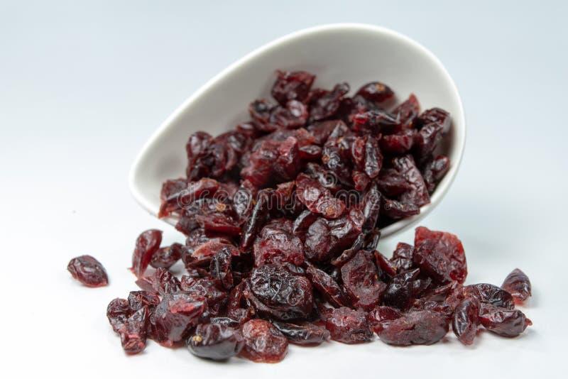 Smakowici wysuszeni cranberries w białym pucharze Fundy dla tortów na obrazy stock