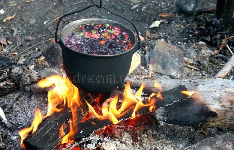 Smakowita ognisko herbata zdjęcia royalty free